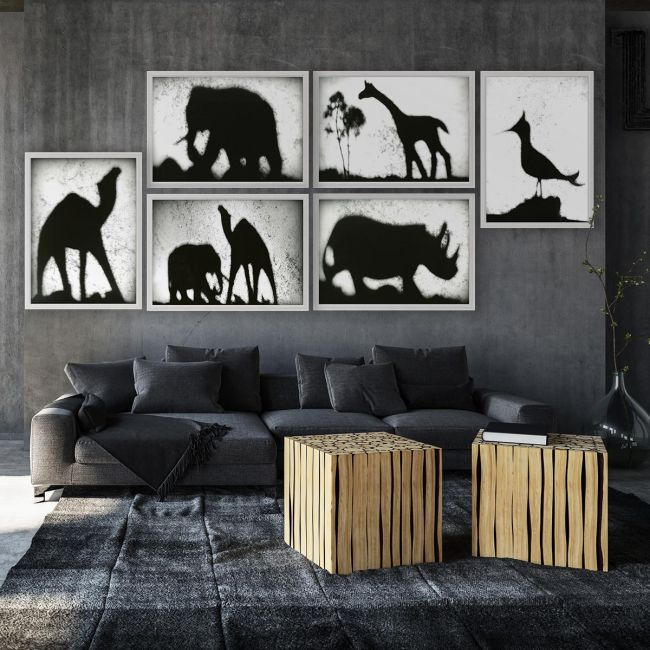 Animal Shadows