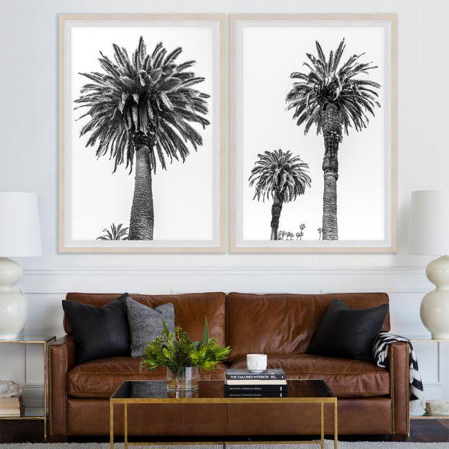 Chatsworth Palms