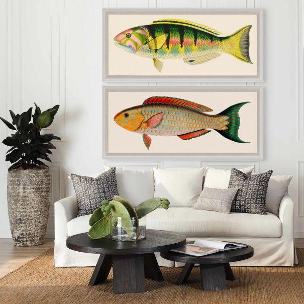 Bennet Fish