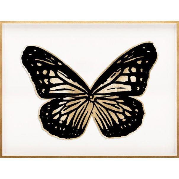 Butterfly Royale, Black 2 Framed