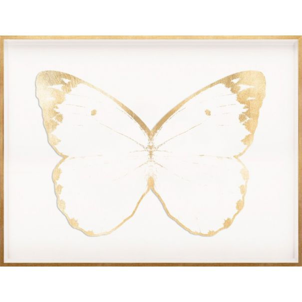 Butterfly Royale, White 1 Framed