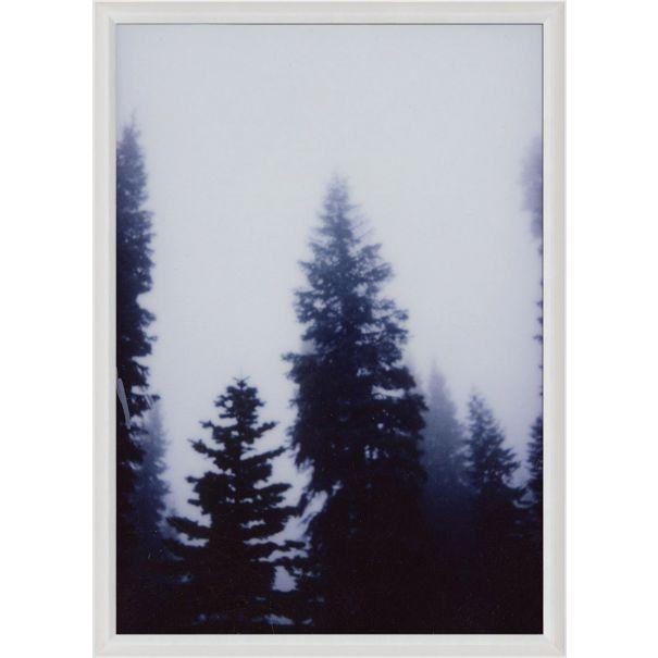 Forest Mist No. 2