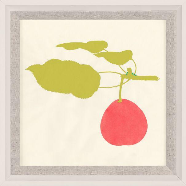 Bright Pomona Fruit 1