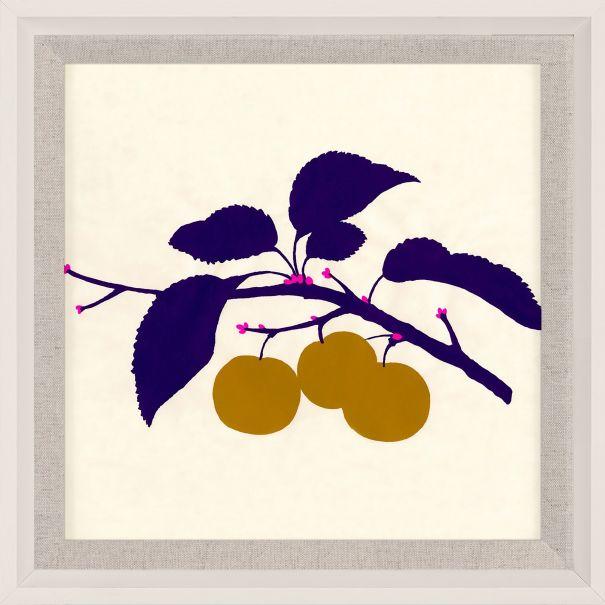 Bright Pomona Fruit 3