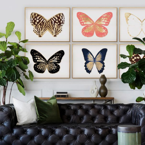 Butterfly Royale, Framed