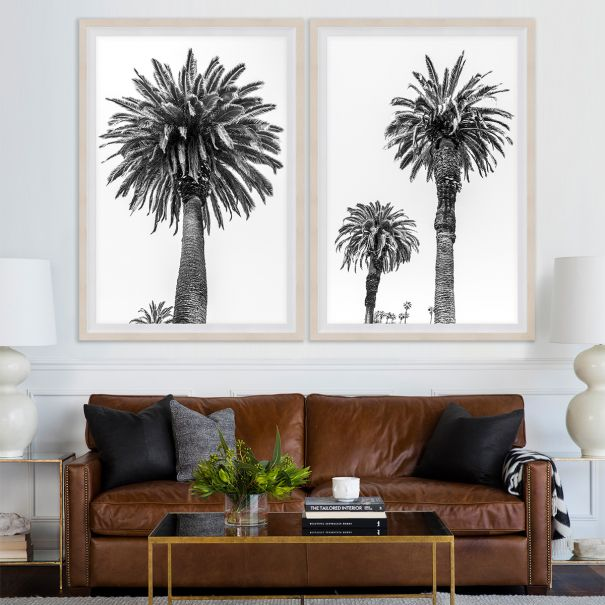 Chatsworth Palms