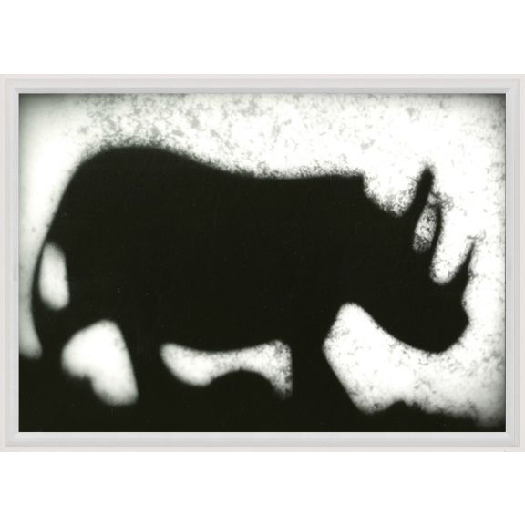Animal Shadow No. 12