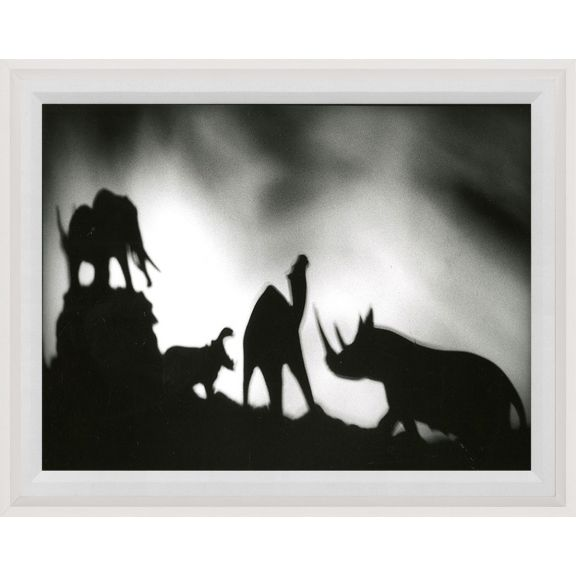 Animal Shadow No. 4