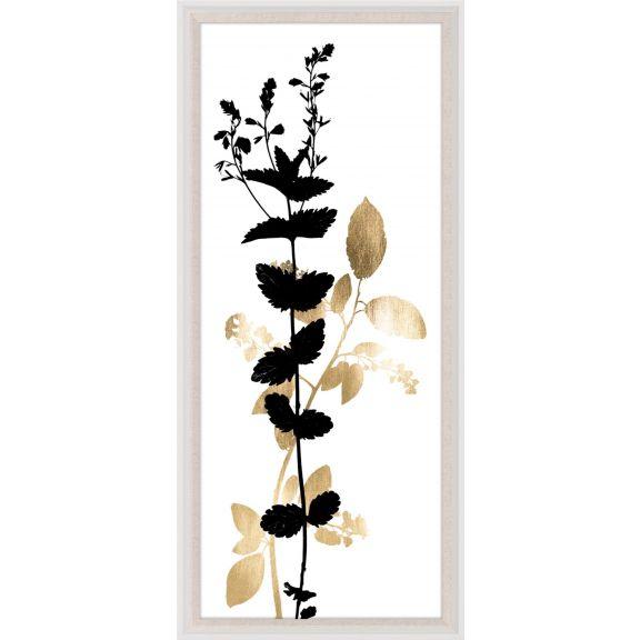 Black & White Herbarium 1