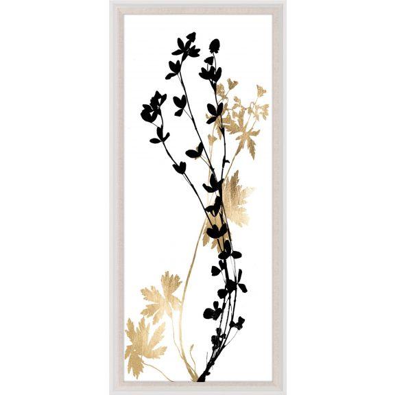 Black & White Herbarium 2