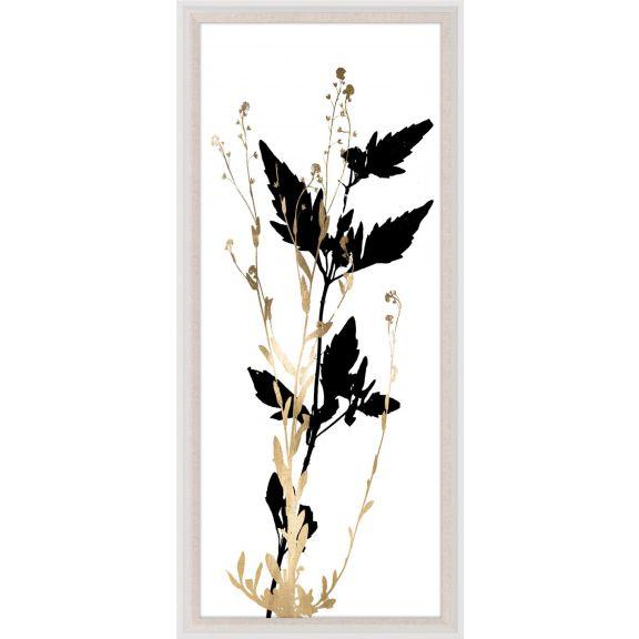Black & White Herbarium 3