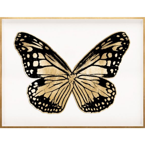 Butterfly Royale, Black 3 Framed
