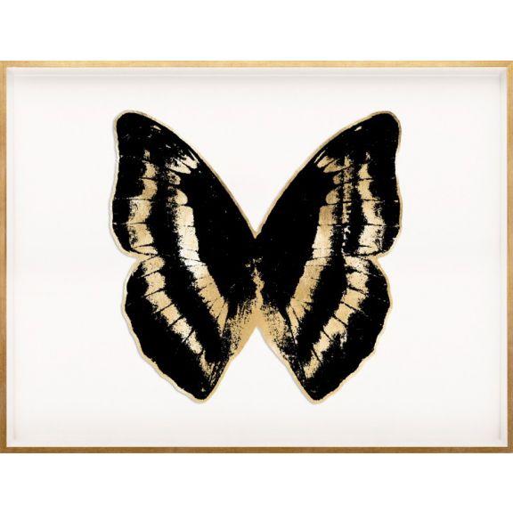 Butterfly Royale, Black 4 Framed