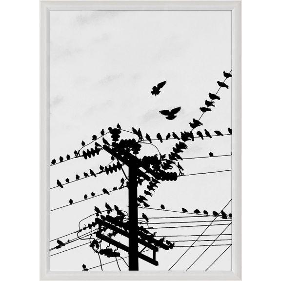 Bird Silhouette