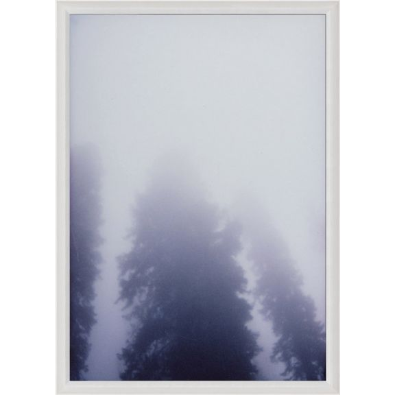 Forest Mist No. 1