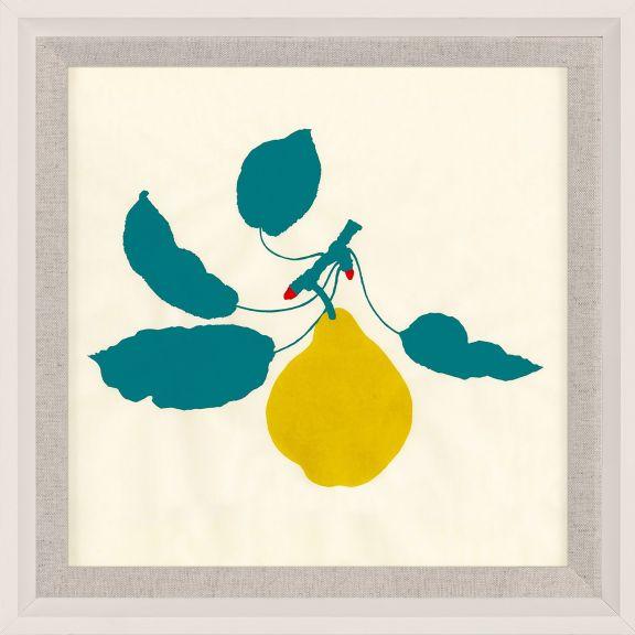Bright Pomona Fruit 4
