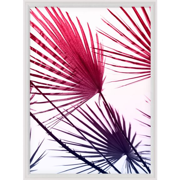 Palm Springs, Fronds