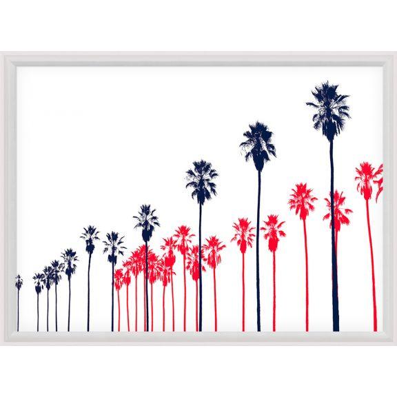 Palm Springs, Palm Rows