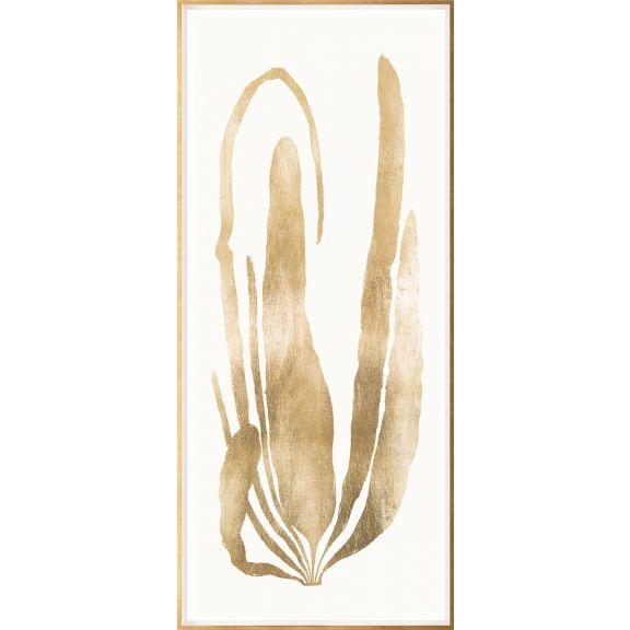 Gold Leaf Seaweed 2