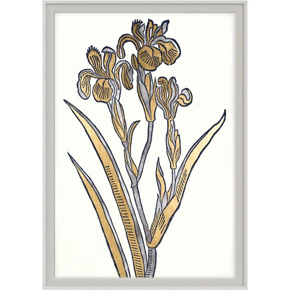 Historical Botanicals Series 2 No. 1