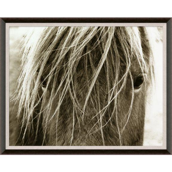 Hyden Horses: Blonde