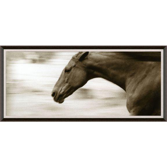 Hyden Horses: Gallop