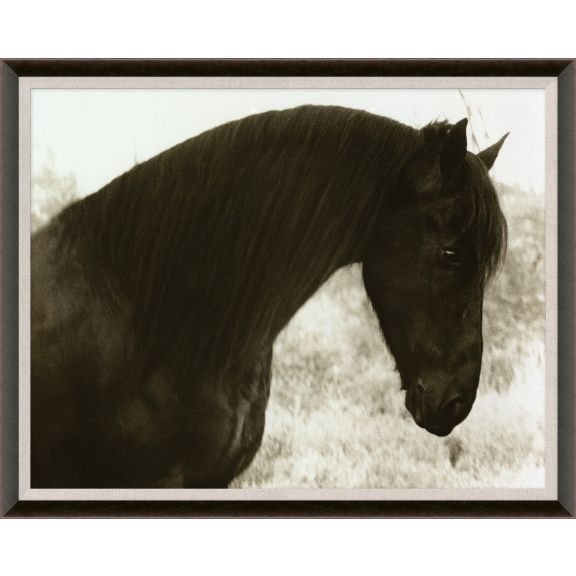 Hyden Horses: Peaceful