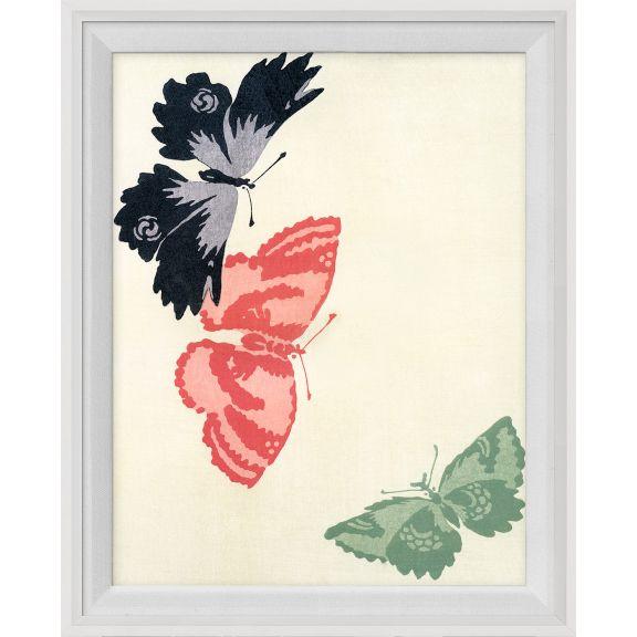Kono Butterflies 15