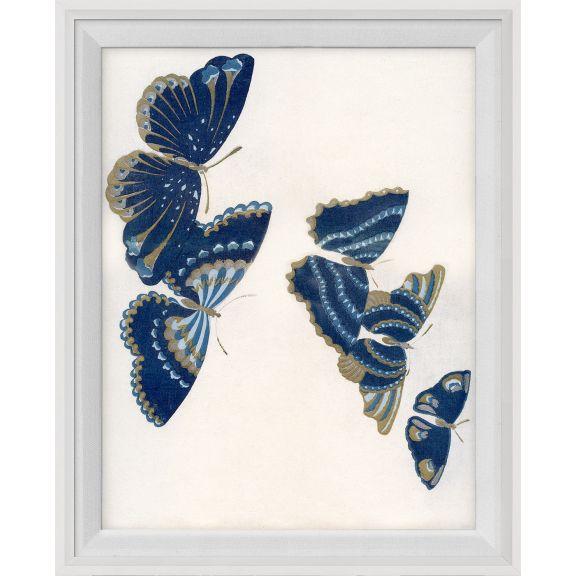 Kono Butterflies 17