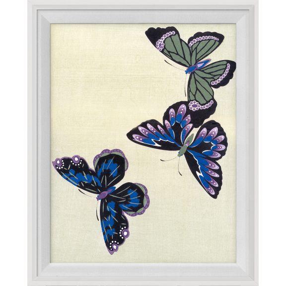 Kono Butterflies 20