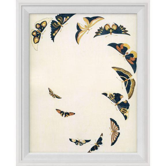 Kono Butterflies 24