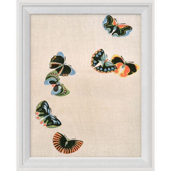 Kono Butterflies 25