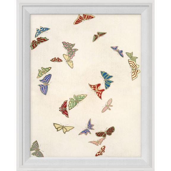 Kono Butterflies 3
