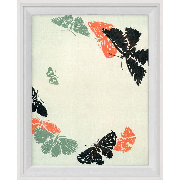 Kono Butterflies 5