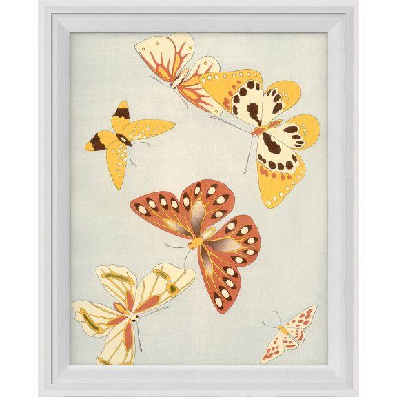 Kono Butterflies 8