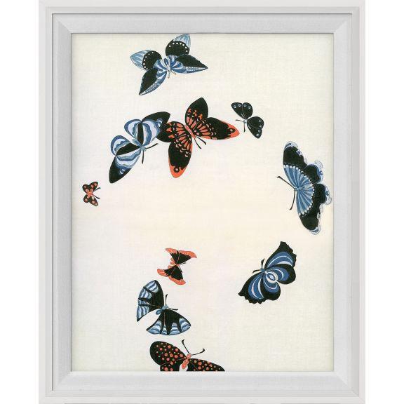 Kono Butterflies 9