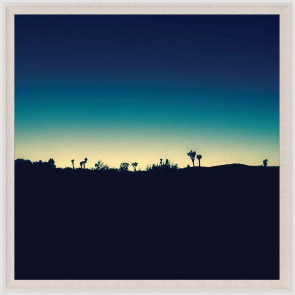 Mojave Mood 1