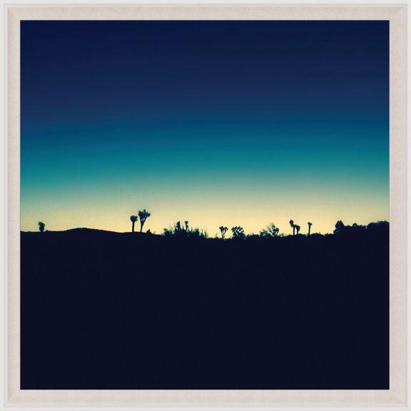 Mojave Mood 2