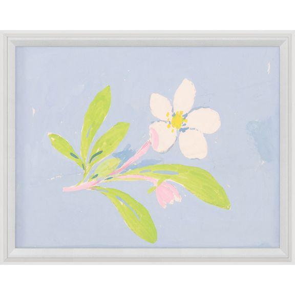 Paule Marrot, Floating Flowers 2