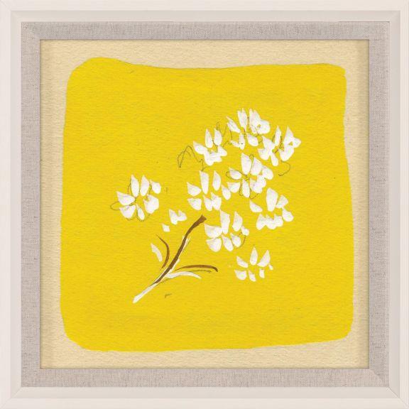 Paule Marrot - Yellows 3