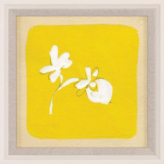Paule Marrot - Yellows 9