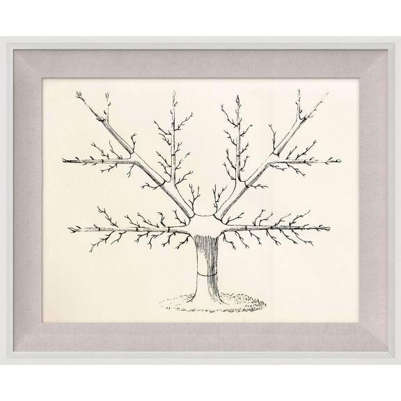 Seasonal Trees 2