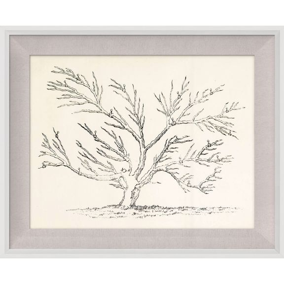 Seasonal Trees 3