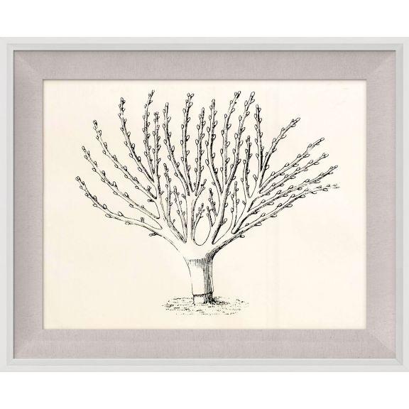 Seasonal Trees 4