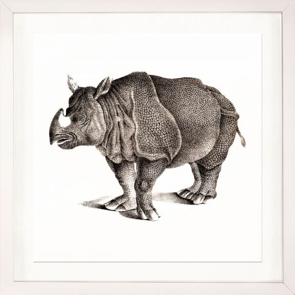 Young Animals: Rhino